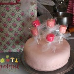 Pink birthday cake decorated w/ dipped marshmallows on a stick