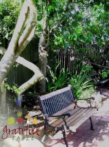 Grateful-Table-Jungle-Yard