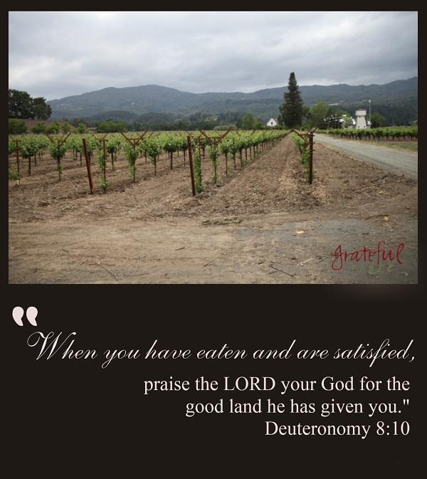 Good-Land-Praise-God-PIN