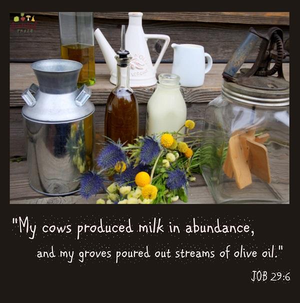 Milk-n-Oil-in-Abundance-PINTEREST