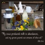 Milk-n-Oil-in-Abundance-PINTEREST