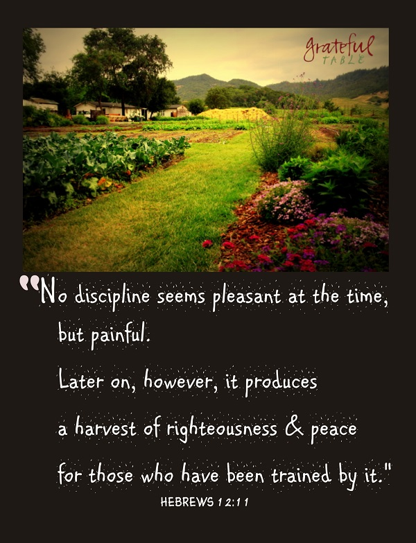 Discipline's no fun at the time, but produces righteousness!