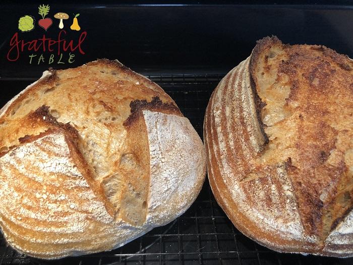 Artisan Bread Wit Ears! Open Crumb Too- Yumm